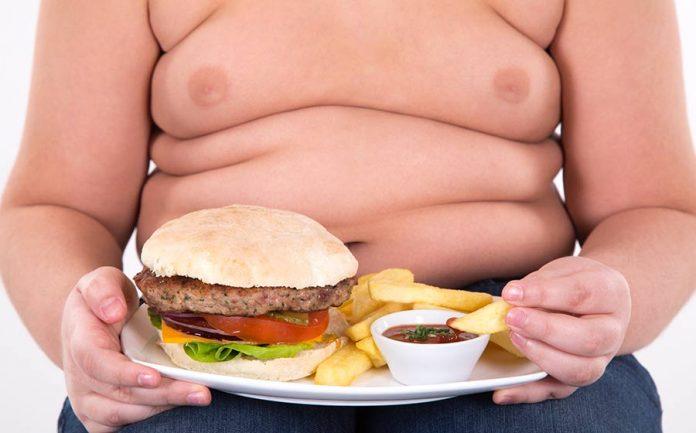 fatos sobre obesidade