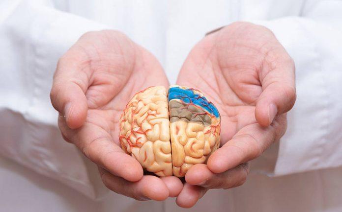 prevenção da demência